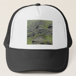 natural folds in stone trucker hat