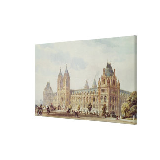 Natural History Museum Stretched Canvas Prints