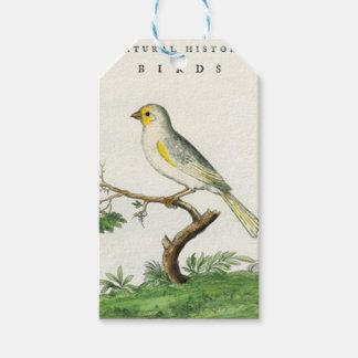 Natural History of Birds - Labels For Gifts