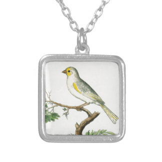 Natural History of Birds Silver Plated Necklace