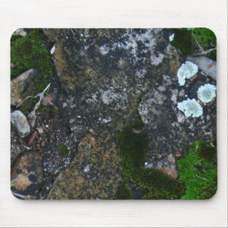 Natural Moss and Lichen Camo Mouse Pad