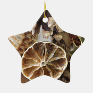 natural objects ceramic star decoration