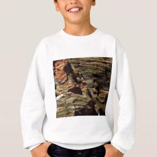 natural rock colors sweatshirt