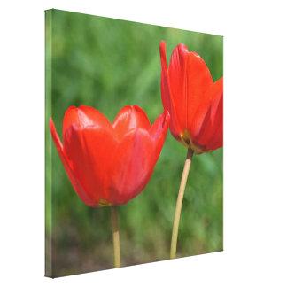 Natural Spring Tulip Floral Canvas Prints