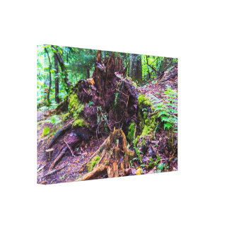 Natural Tree Trunk Canvas Print