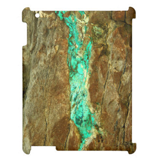 Natural turquoise vein in rough brown stone iPad case
