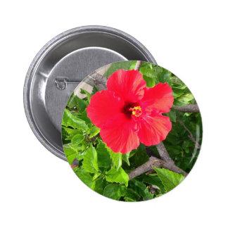 Natural wonders Hawaiian style Pin