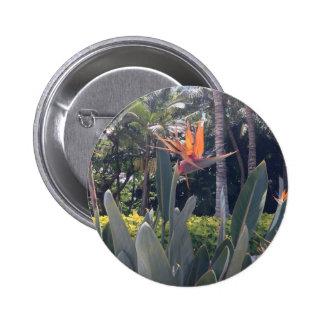 Natural wonders Hawaiian style Pins