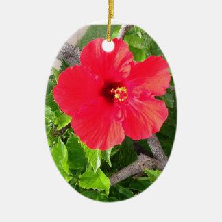 Natural wonders Hawaiian style Christmas Tree Ornament