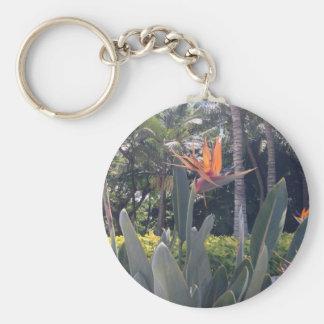 Natural wonders Hawaiian style Key Chains