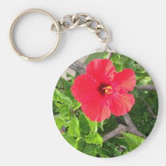 Natural wonders Hawaiian style Keychain