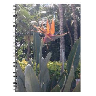 Natural wonders Hawaiian style Spiral Note Book