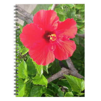Natural wonders Hawaiian style Notebook