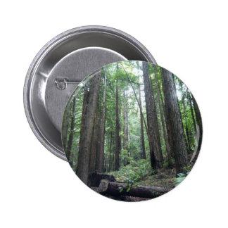 nature 1 pin