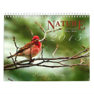 Nature and Wildlife Paintings 2015 Calendar