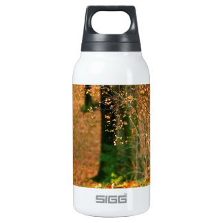 Nature Autumn Into The Woods 0.3L Insulated SIGG Thermos Water Bottle