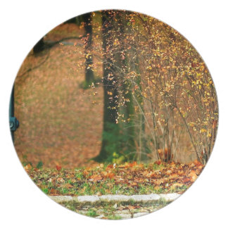 Nature Autumn Into The Woods Dinner Plates