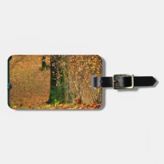 Nature Autumn Into The Woods Bag Tag