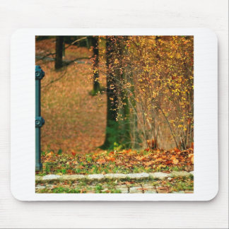 Nature Autumn Into The Woods Mouse Pad