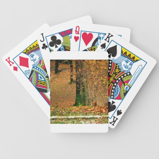 Nature Autumn Into The Woods Poker Cards