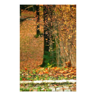 Nature Autumn Into The Woods Customized Stationery