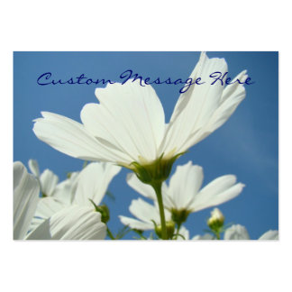 Nature Business cards White Daisy Flowers Blue Sky