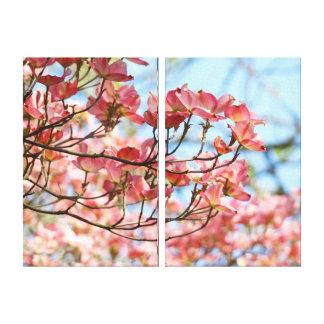 Nature canvas art prints Floral Pink Dogwood Sky Canvas Prints