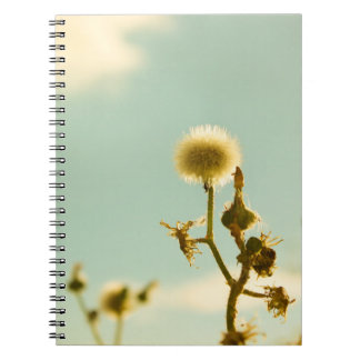 Nature Colors Notebooks