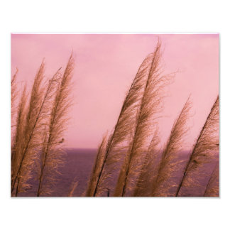 Nature Colors Photo Print