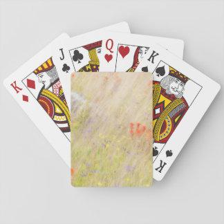 Nature Conservancy | San Juan Islands, WA Playing Cards