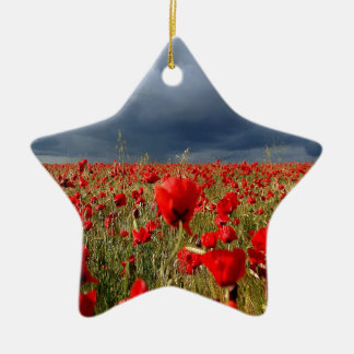 Nature Field Poppy Memories Double-Sided Star Ceramic Christmas Ornament