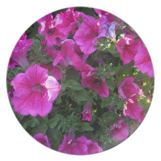 Nature, Flora, Pink Flower Plate