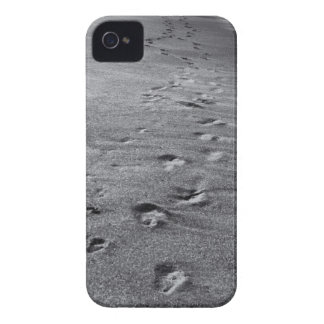 nature footprints iPhone 4 case