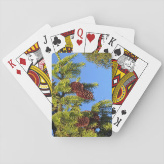 Nature forest photo with branches playing cards