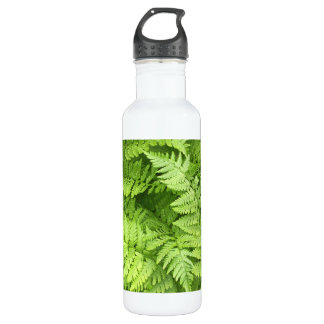 Nature Green Fern Water Botlle 710 Ml Water Bottle