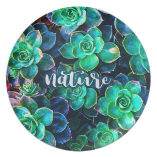 Nature Green Succulent Photo Plate