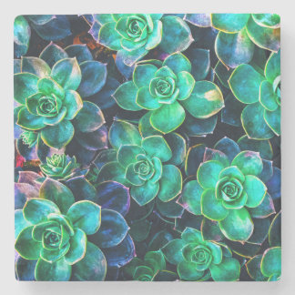 Nature Green Succulent Photo Stone Coaster