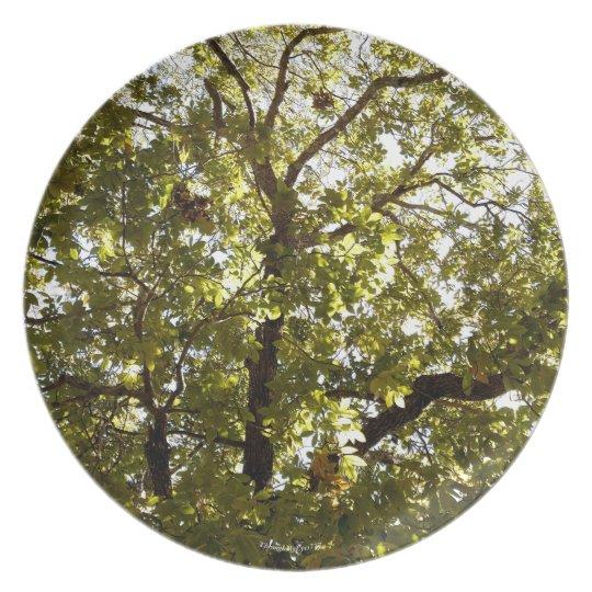 Nature Green Tree Dish