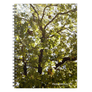 Nature Green Tree Notebook