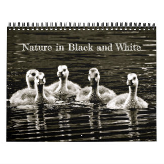 Nature in Black and White Calendar