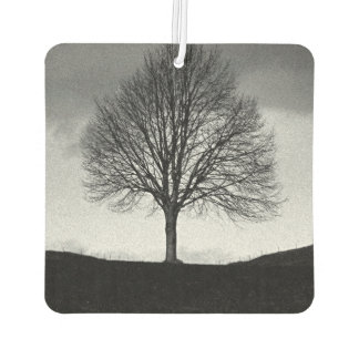 Nature in black and white car air freshener