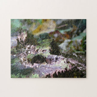 Nature in New York Jigsaw Puzzle