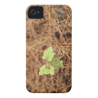 Nature in your iphone iPhone 4 cover