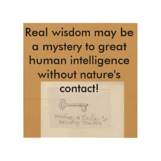Nature is asecret human School Wood Print
