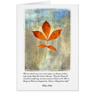 Nature Is Imagination Card