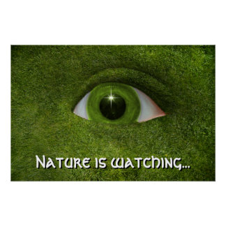 Nature is watching... print
