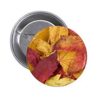 Nature Leaves Autumn Fall Tree Leaf Colorful Art Pinback Button
