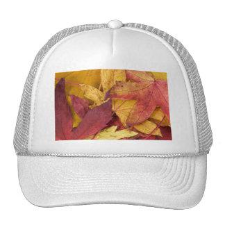Nature Leaves Autumn Fall Tree Leaf Colorful Art Hat
