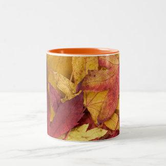 Nature Leaves Autumn Fall Tree Leaf Colorful Art Mug