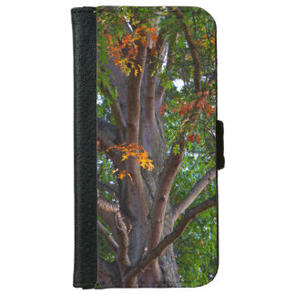 Nature Lover Winding Tree Branches iPhone 6 Wallet Case